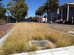 Implementing LID and Green Infrastructure BMPs